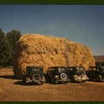 Hay stack in Delta County, Colorado, 1940, Russell Lee