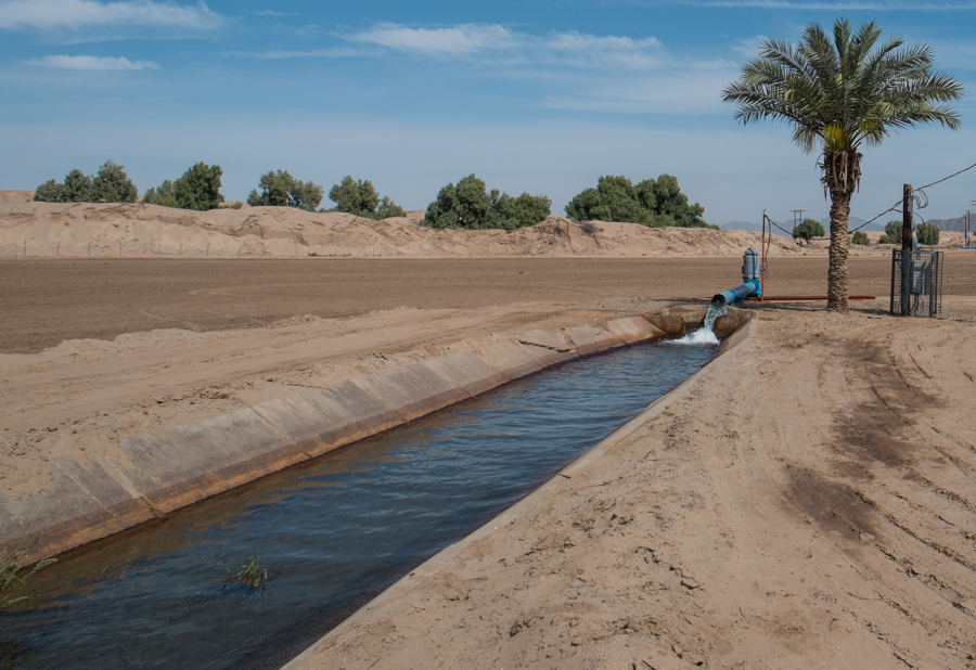 Groundwater pumping south of Algodones, along the Colorado River limitrophe, Baja, by John Fleck, March 2014