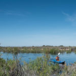 Kayak on the Colorado River Delta pulse flow, 20-mile monitoring site, March 28 2014