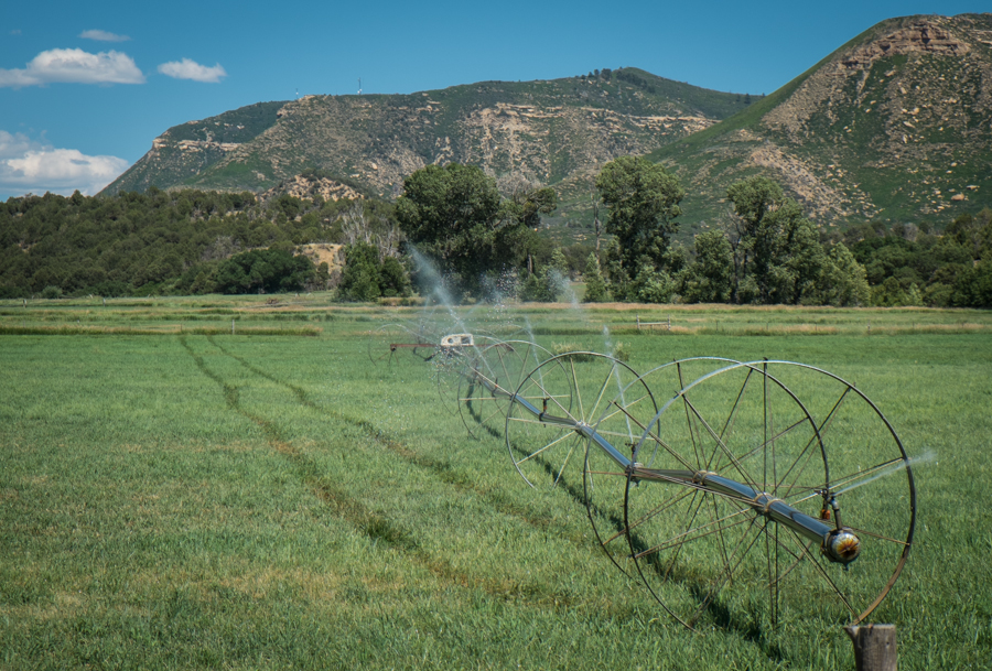 Mancos Valley irrigation