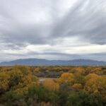 Fall colors, Rio Grande, Albuquerque, New Mexico, October 2020