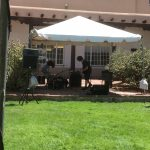 Rock and roll in the cactus garden, University of New Mexico, opening week fall semester 2016
