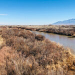 Rio Grande in Albuquerque, looking north from the Gail Ryba Bridge, Feb. 20, 2021