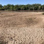 The drying of New Mexico's Rio Grande