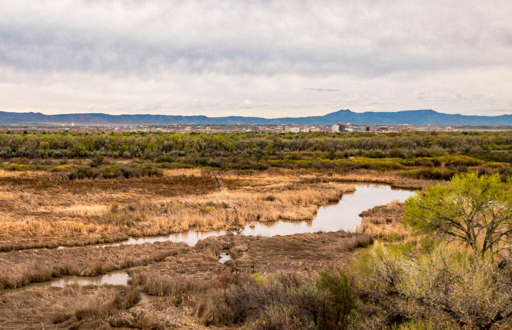 Rio Grande Oxbow and the city of Albuquerque, looking SE