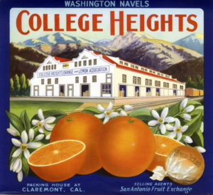 "Title: Crate label, ""College Heights."" Washington Navels Date: 02/19/2008 Collection: Riverside Public Library Citrus Label Collection Owning Institution: Riverside Public Library Source: Calisphere Date of access: July 24 2017 20:28 Permalink: https://calisphere.org/item/ark:/13030/kt7x0nd752/?_pjax=%23js-pageContent"