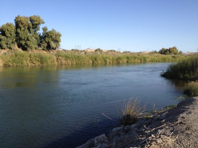 Colorado River at Yuma, Arizona, February 2012