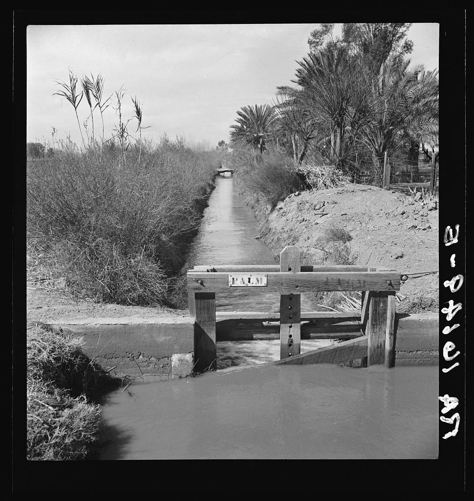 Imperial Valley, 1937, Dorothea Lange, courtesy Library of Congress