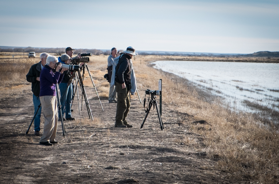 photographers at Bosque del Apache north pond, January 2014, by John Fleck