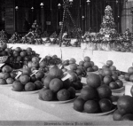 citrus displays at the 1885 Riverside Citrus Fair, Riverside, California, via Calisphere