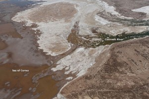 "Colorado River ""pulse flow"" reaches the sea. Image courtesy of Sonoran Institute/NASA"