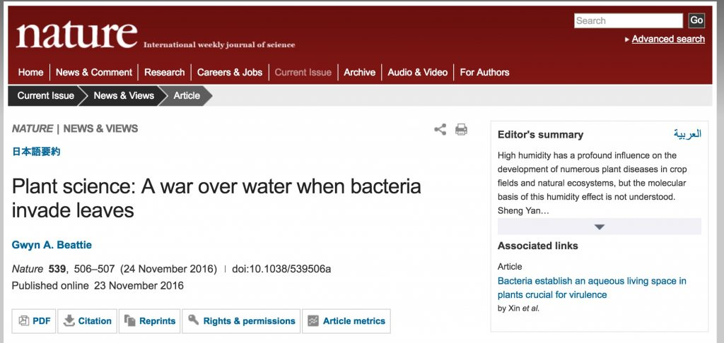 Plant science: A war over water when bacteria invade leaves Gwyn A. Beattie Nature 539, 506–507 (24 November 2016) doi:10.1038/539506a Published online 23 November 2016